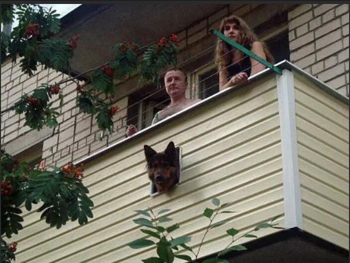 пикабу фото эпические балконы мне нравятся